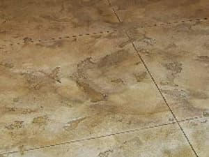 Sunroom Flooring Concrete