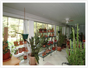 Sunroom Gardening